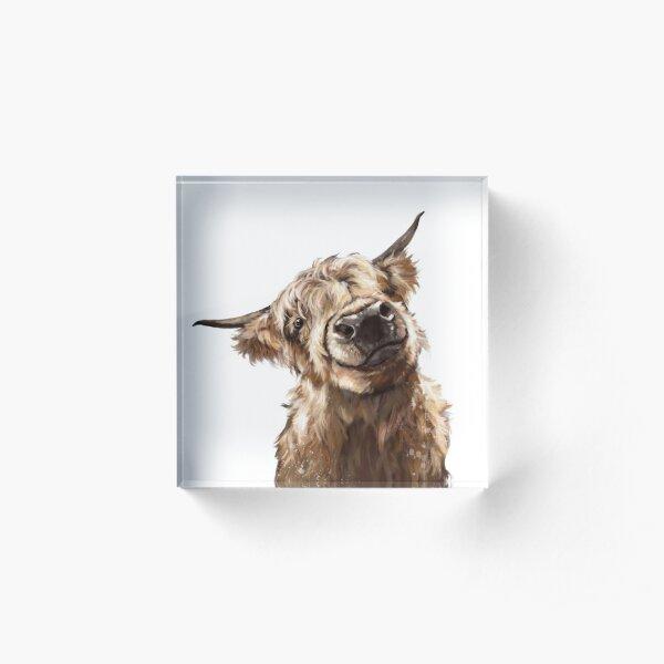 Highland Cow Acrylic Block