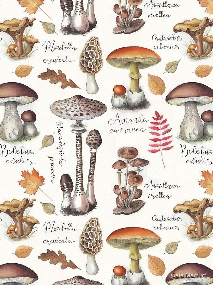 Botanical Mushrooms by gaiamarfurt