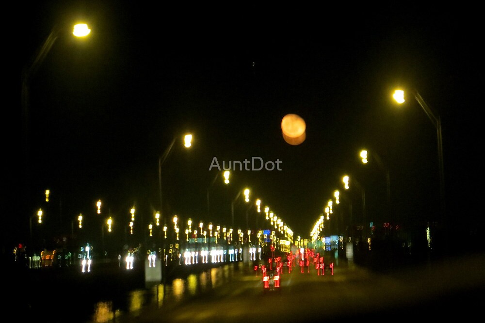 Night Vision by AuntDot
