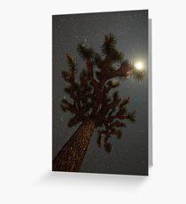 Moon Lit Greeting Card