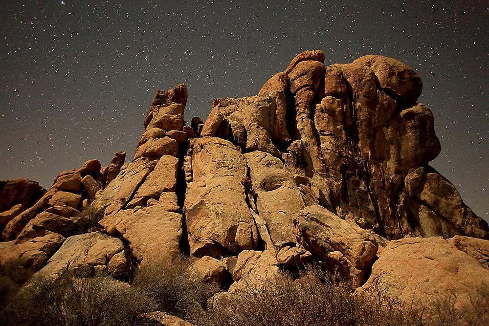 Rocky Night by Darryl Ford