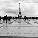 la Tour Eiffel depuis le Trocadéro - Paris, France by Norman Repacholi