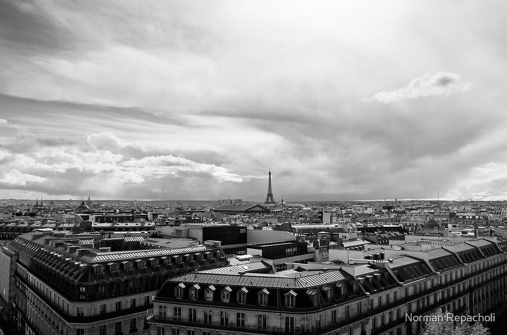 Landmark on the horizon - Eiffel Tower - Paris, France by Norman Repacholi