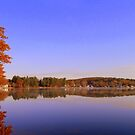 Beaver Lake by Uni356