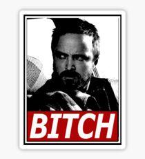 Jesse, Bitch Sticker