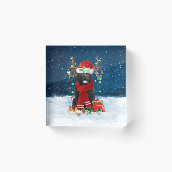 Newfoundland Dog in Snow with Christmas Gifts Acrylic Block
