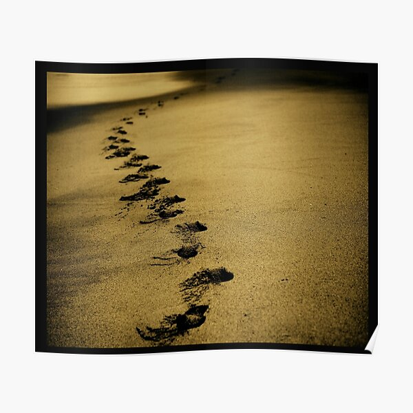 Sand steps on the shore of the sea Poster