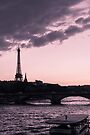 The Eiffel Tower from Pont Alexandre III (vertical) by OlivierImages