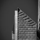 Newhall Monochrome by Lea Valley Photographic
