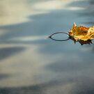 Autumn Leaf by Yelena Rozov