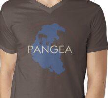Pangea Mens V-Neck T-Shirt