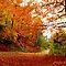 Autumnal Splendour in ATW