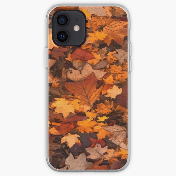 Fall foliage in autumn brown October forest iPhone Soft Case