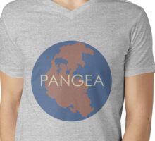 Pangea 2 Mens V-Neck T-Shirt