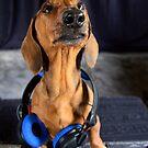 Dj P-Doggy by Sarah Guiton