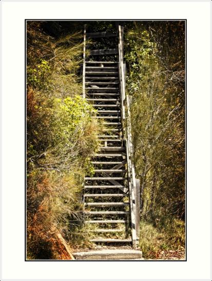 Wooden stairs on a beach at Batemans Bay by Wolf Sverak
