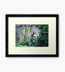 Canal side Framed Print