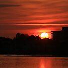 Dunlawton Sunrise by Deborah  Benoit