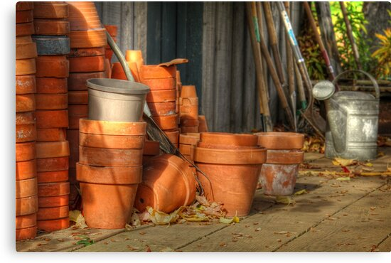 The Potting Shed by Amanda White