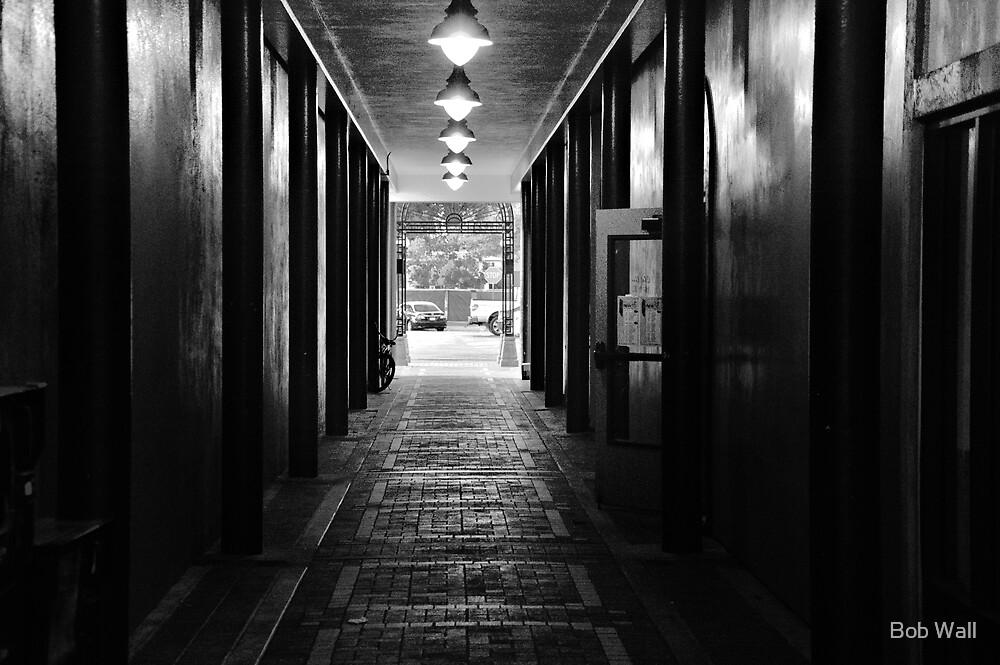 Down a Tunnel Darkly by Bob Wall