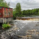 Abandoned Mill by Amanda White