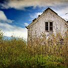 Bramble House by Amanda White