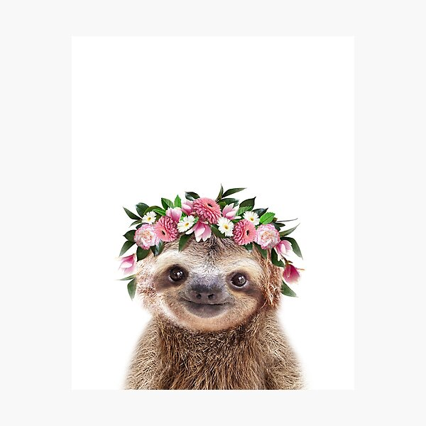Baby Sloth With Flower Crown, Baby Animals Art Print by Synplus Photographic Print
