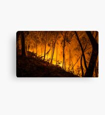 Gully Fire Canvas Print