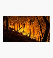 Gully Fire Photographic Print