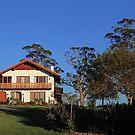 Residence at Grindlewald by margotk