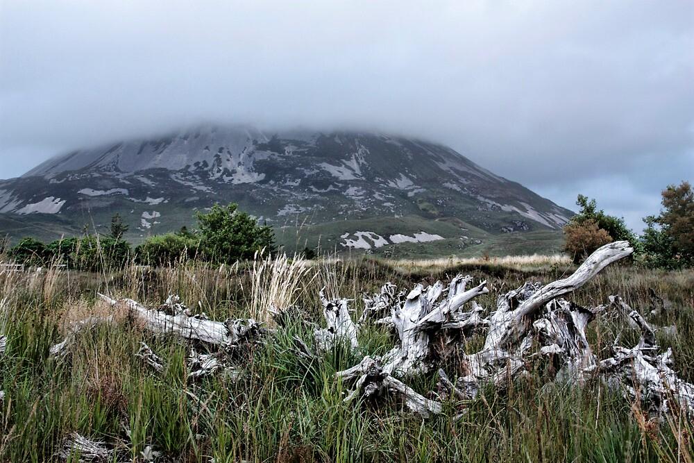 Mount Errigal by Julesrules