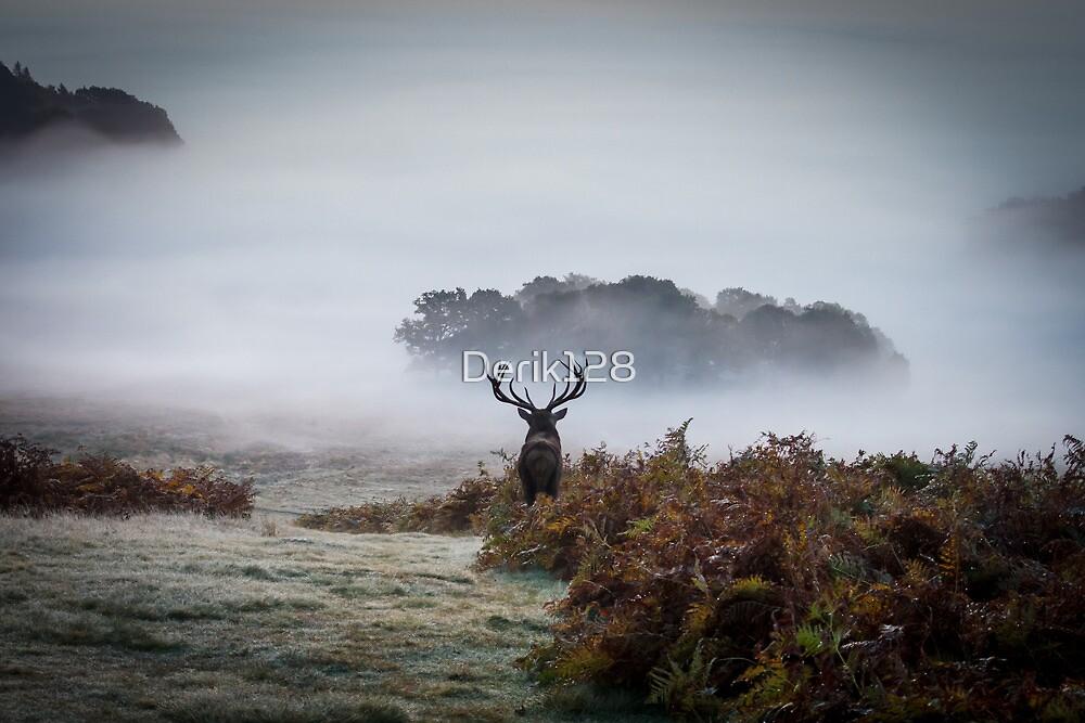 Surveying his Kingdom by Derik128