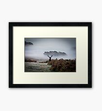 Surveying his Kingdom Framed Print