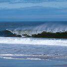 Waves by Sam Davis