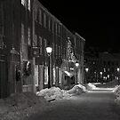 Winter on the Mall by Sam Davis
