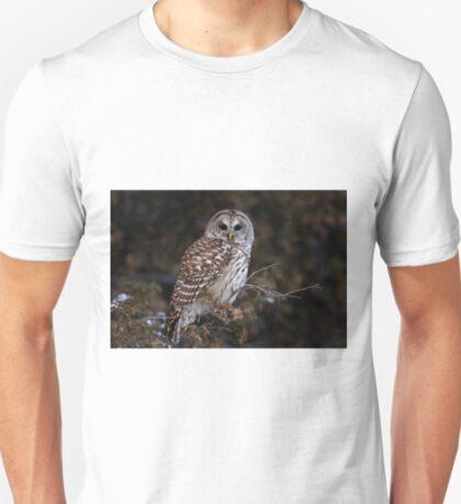 Barred Owl - Kanata T-Shirt