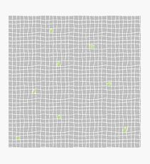Carreaux - Grey/Green - Bis Photographic Print