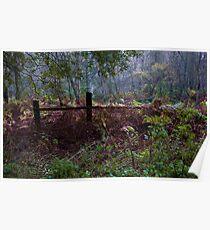 Woodland Maze 2 Poster