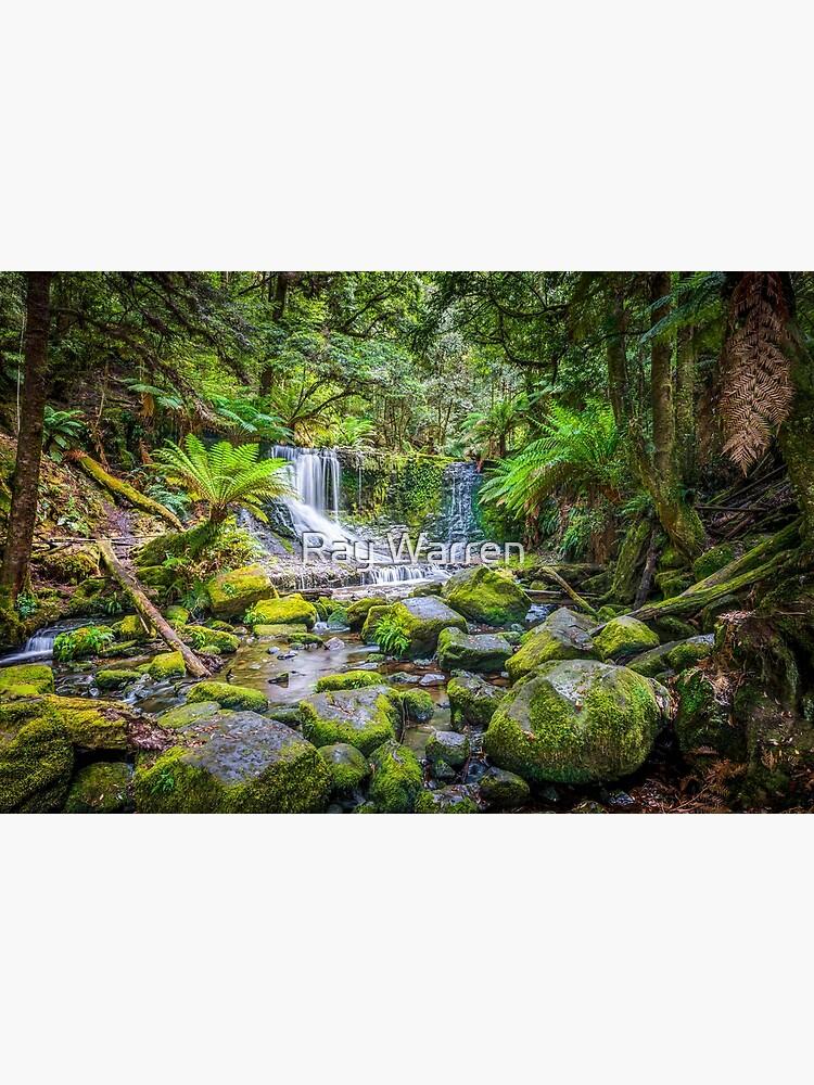 Lady Barron Falls by RayW