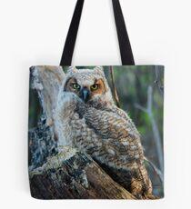 Horned Owl Tote Bag
