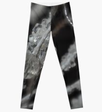 The Illusion Leggings