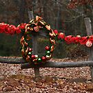 Hitching Post by Janice Carter