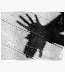 Shadow Bird Poster