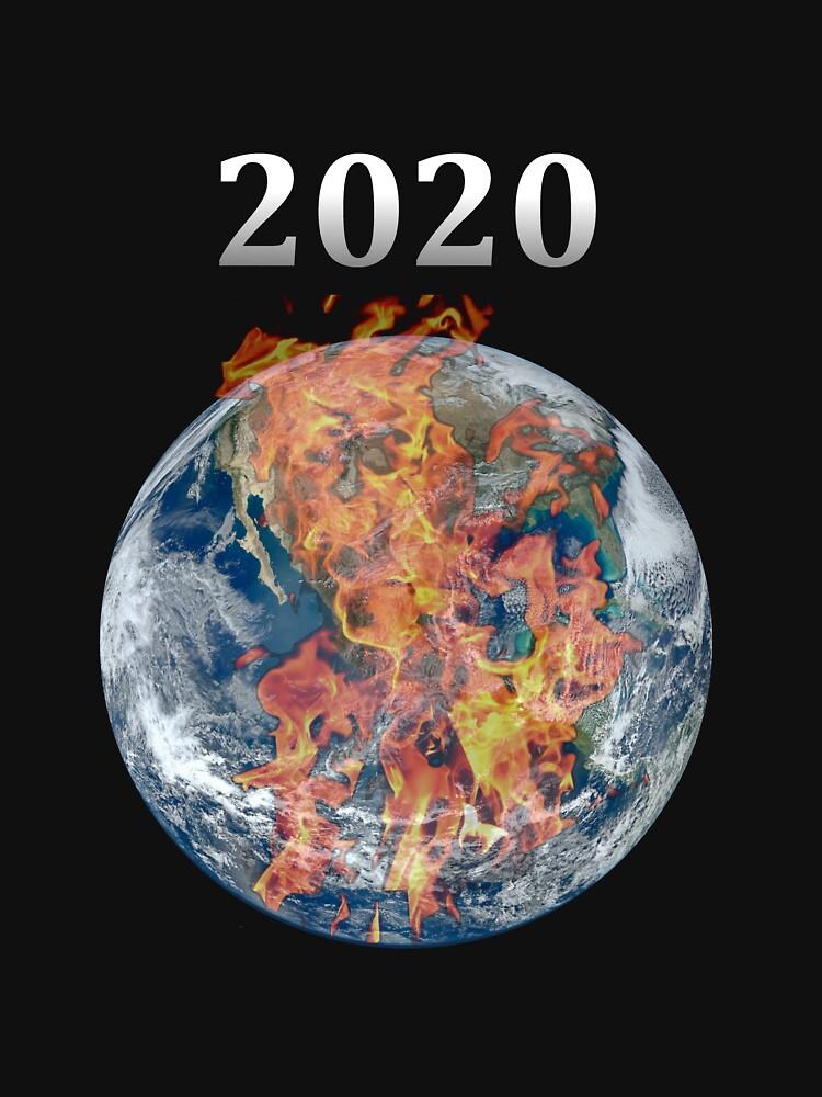 Year 2020 Pandemic World Burn by richtatejr