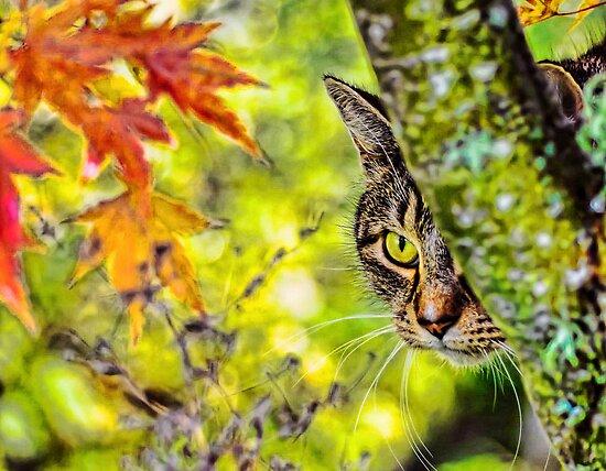 Eye on Autumn by Kenneth Haley