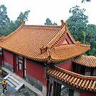 The Summer Palace, Beijing, China by Ralph de Zilva