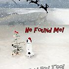 He Found Me! by CarolM