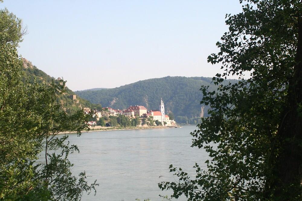 A village near the Danube, Wachau Austria by Ilan Cohen