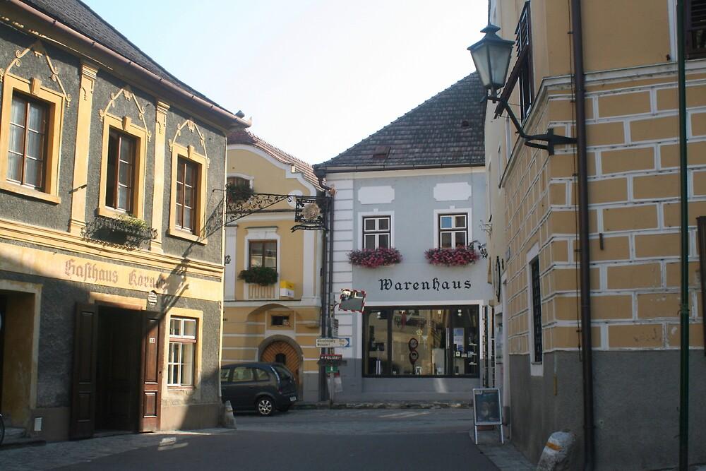A street in a village near the Danube, Wachau Austria by Ilan Cohen