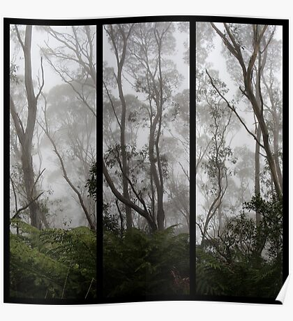 Forest - Triptych Poster